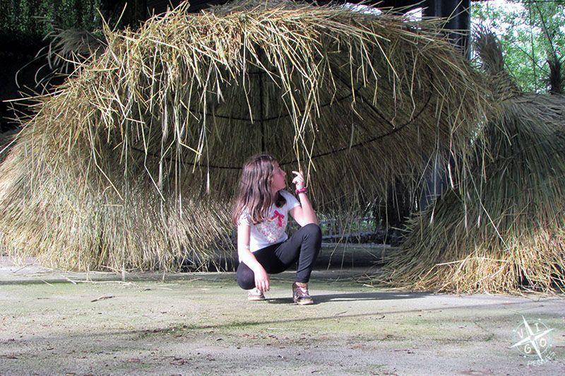 Tejados de paja en la Quinta Lago dos cisnes