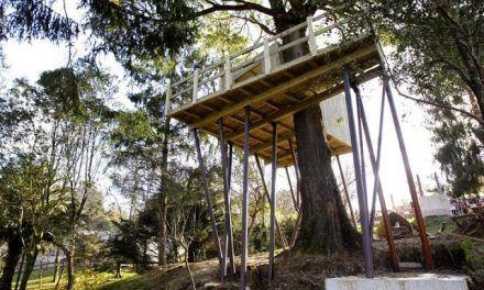 Dormir en una cabaña? En Vigozoo es posible!!!