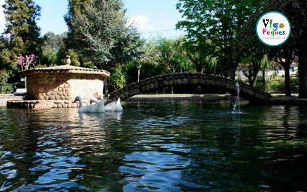 Lago con cisnes en el Parque A Canuda de Salvatierra