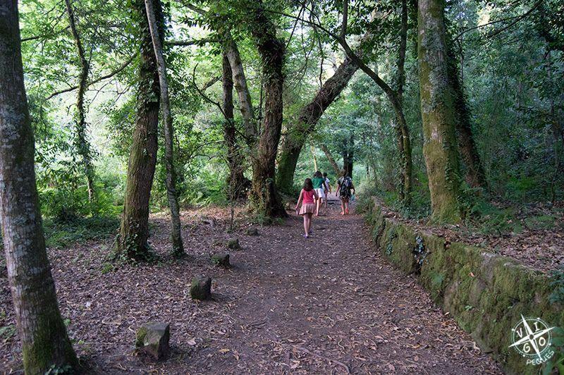 senda de los molinos de aldn por el bosque encantado