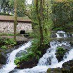 Ruta de la piedra y el agua y Monasterio de Armenteira