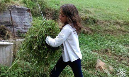El Trasgu la fronda: Granjero por un día