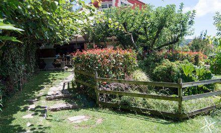 Comer con niños en Vigo: descubre A Buraca do Pavero