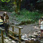 Talleres de fotografía para niños y adolescentes