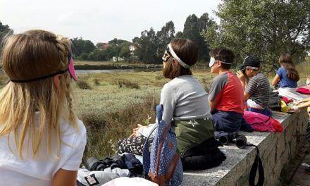 Bosquinenos: aprendiendo y jugando en la naturaleza
