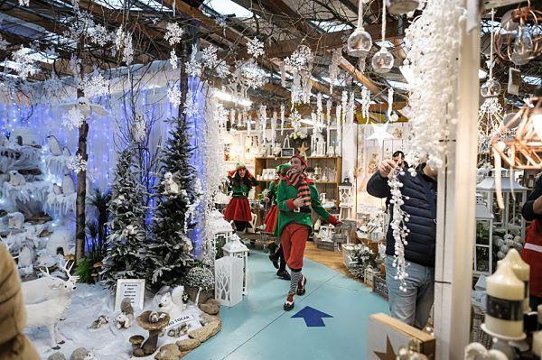 O bosque de Nadal
