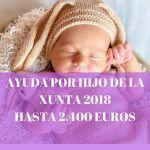 Ayuda por hijo a cargo de la Xunta 2018