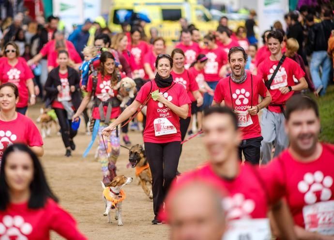 La carrera de perros en familia llegará a Vigo en Noviembre