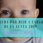 磊 Ayuda por hijo a cargo de la Xunta 2019