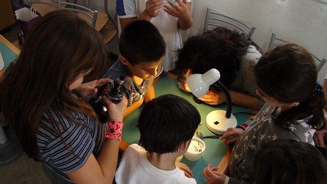 Ciencia singular: talleres y visitas guiadas gratuitas para todos los públicos.