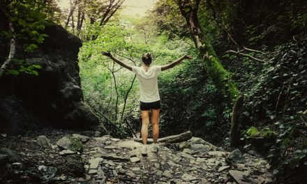 Bosques terapéuticos: rutas guiadas gratuitas por los parques forestales de Pontevedra
