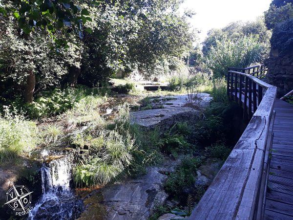 🥇 Ruta fluvial del Río Baíña: paseo ideal para hacer con niños