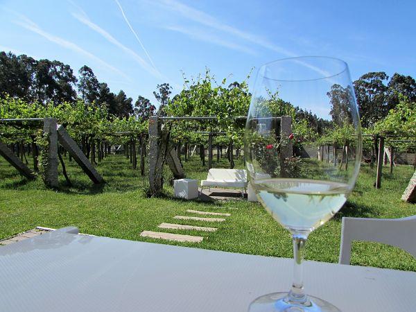 Vuelven las rutas y los buses del vino por las Rias Baixas y el Ribeiro