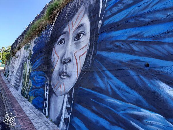 Cómo llegar al mural de Lula Goce de Nigrán